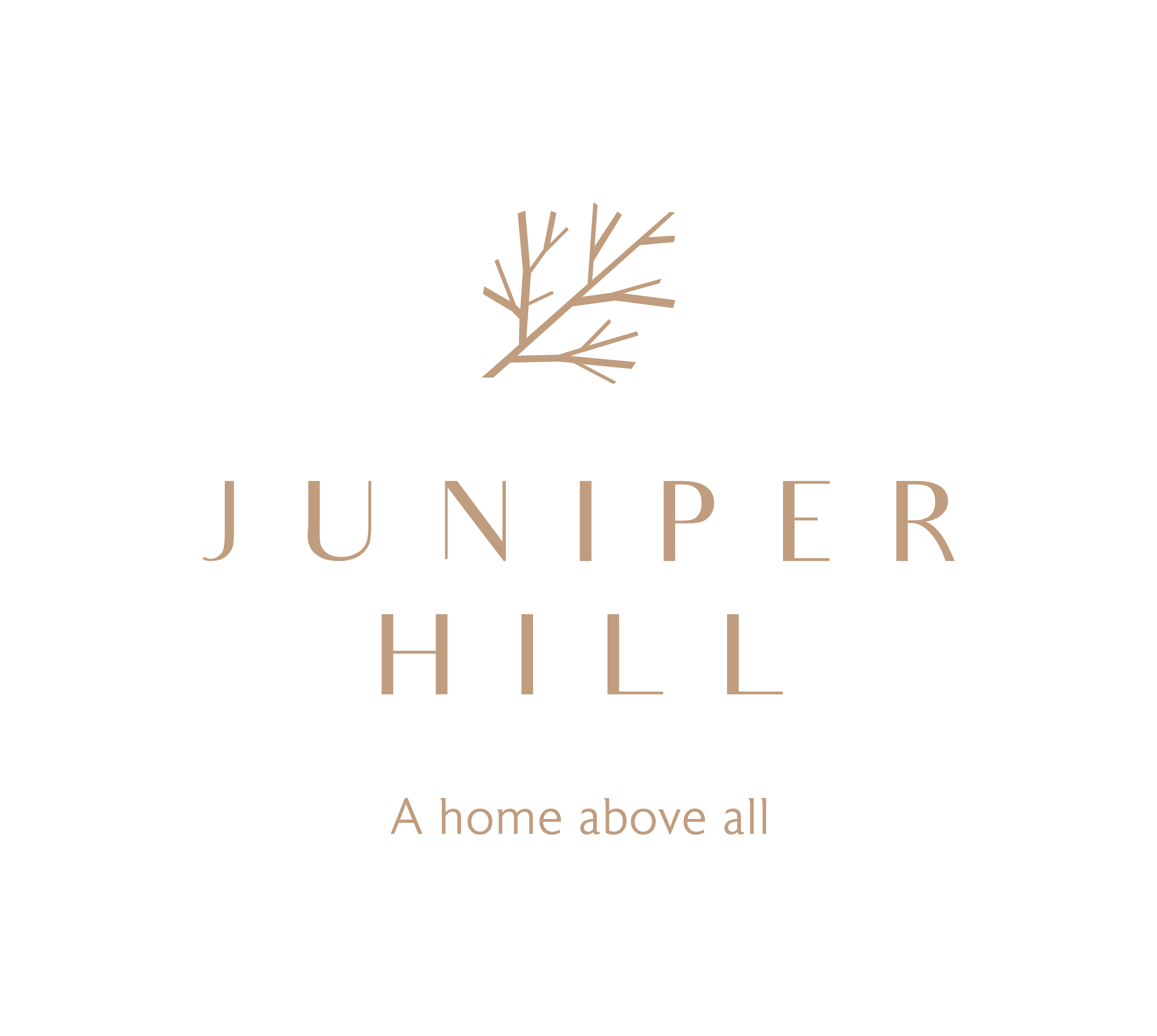 Juniper Hill image